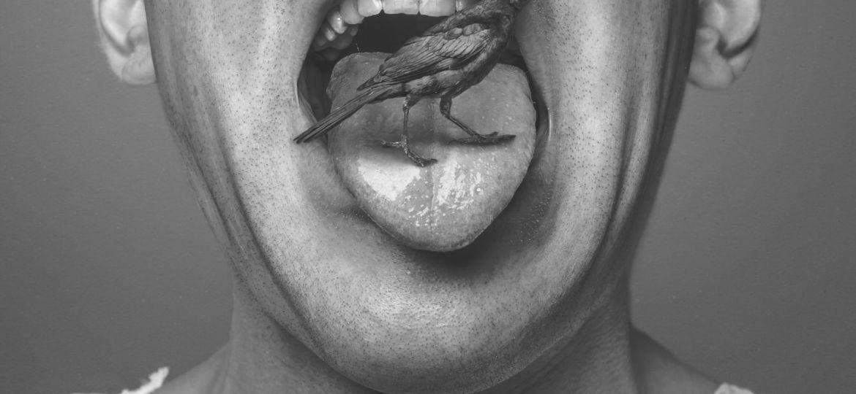 Vogel auf Zunge