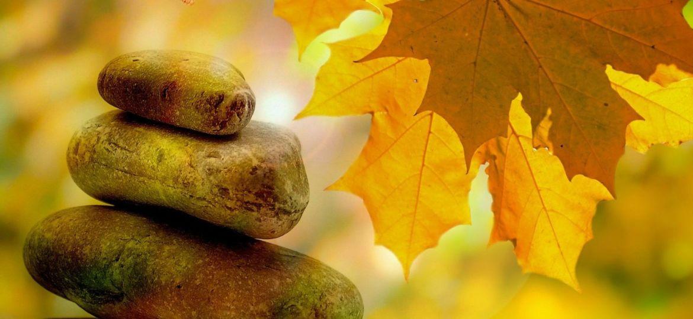 Herbst I Vivian Ansuhenne